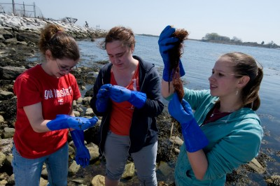 Students working outside in a science/lab class at Avery Point campus. Photo credit: UConn